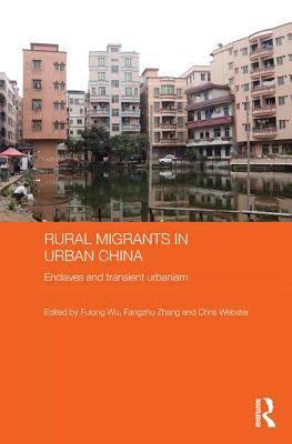 Urban Poverty, Housing and Social Change in China (Housing and Society Series)